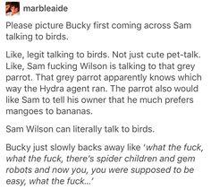 Bucky Barnes Sam Wilson the falcon avengers marvel mcu