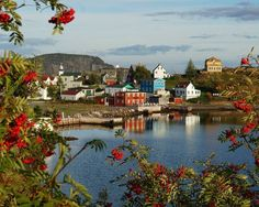 Explore the most easterly point in North America with a tour of Newfoundland with Globus! Enjoy breathtaking scenery, wine tasting, whale and nature. Newfoundland And Labrador, Newfoundland Canada, Atlantic Canada, Stay The Night, Day Tours, Far Away, Beautiful Places, Beautiful Scenery, Travel