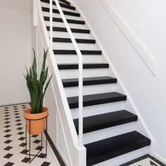 Sweet Home, Stairs, Modern, Home Decor, Stairway, Trendy Tree, Decoration Home, House Beautiful, Room Decor