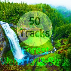 #50 #Tracks #Forest #Waterfall & #Birds #Sounds #with #Ambient #Music #Nature #Sounds #for #Meditation #Relaxation #Spa #Study  #Amazing #Grace #Angel #Aromatherapy #Asian #Meditation #Music #Aura #Balance #Biofeedback #Bliss #Bloom #Brain #Stimulation #Breathe #Clean #Ocean #Sounds #Come #Into the #Light #Contemplation #Cosmic #Fly #Guitar #Chimes #Violin #Piano #Strings #Calm  #naturesounds #ambientalmusic #relaxmusic #relax