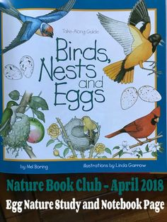 Nature Book Club Egg and Nest Study Book Club Books, Book Lists, Study Board, Science Nature, Science Fun, Classical Education, Preschool Lesson Plans, Science Curriculum, Outdoor School