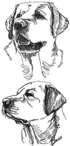 Labrador Retriever Set [continuous line drawings]