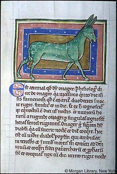 Bestiary - Medieval