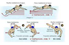 Gráfico sobre la postuta correcta para el estilo 'libre'. Imagen de i-natacion.com