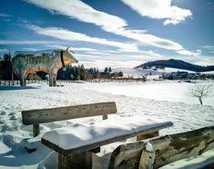 Eine Idee für einen Winterwonderland  Ausflug in der Steiermark?  Rauf auf die Teichalm gemeinsam mit dem Teichalmsee-Ochsen  die Wanderer Skifahrer und Langläufer bewundern und danach auf einen köstlichen Kaiserschmarrn ins Almwellness Pierer oder einen der anderen angrenzenden Gastronomiebetriebe einkehren  Perfekt  Infos: www.teichalmlifte.at Skiers, Kaiserschmarrn, Water Pond