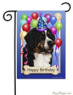 1000 Images About Birthday Wishes On Pinterest Funny