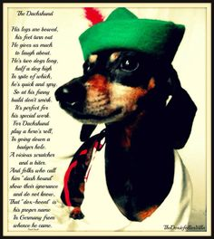 Story of Dachshunds