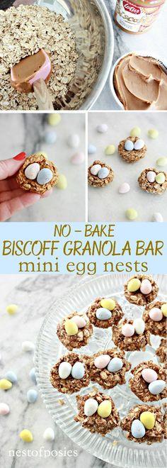 No Bake Biscoff Gran