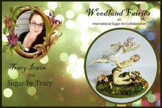 Woodland fairies 2016