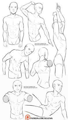 Male torso reference by https://www.deviantart.com/sellenin on @DeviantArt