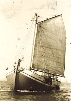 "Old photo of the oldest surviving bracera ""Roditelj"" with a gaff rigging"