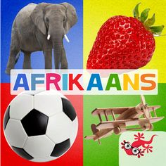 Dieregeluide in Afrikaans on the App Store Flashcard App, Friends Font, Afrikaans, Software Development, App Store, My Children, Ipod Touch, Mobile App, Elephant