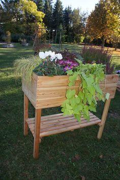 bac a potager pour personne en fauteuil fait en palette recyclage palettes pinterest. Black Bedroom Furniture Sets. Home Design Ideas