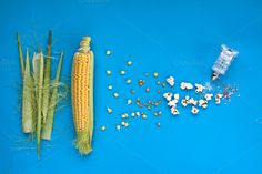 Pop-corn. Table top view. by kawizen  on @creativemarket #corncob #corn #sweetcorn #popcorn #pop #heat #process #processing #yellow #blue #field #symbol #symbolic #healthy #salt #crop #agriculture #farm #vegetarian #grain #vegetable #harvest #snack #cultivation #grown #veggie #healthyfood #poppingcorn #corngrain #tabletop #tabletopview #topview