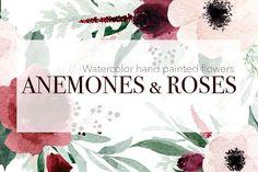 Anemones & Roses by MariePierLaf on @creativemarket