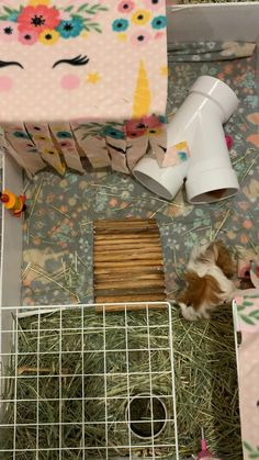 Diy Guinea Pig Cage, Guinea Pig House, Pet Guinea Pigs, Guinea Pig Care, Happy Animals, Animals And Pets, Peruvian Guinea Pig, Baby Animals Pictures, Cute Funny Dogs