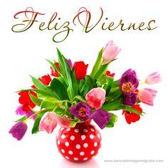 ☺FELIZ VIERNES!!! Se viene el finde!!!  http://frases-conimagenes.blogspot.com.ar/2012/09/feliz-viernes-se-viene-el-finde.html