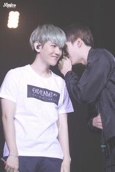 151121 EXO Baekhyun & Sehun (cr: KIMFOXY)