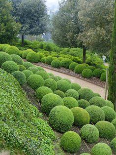 Jardin du chateau d amboise