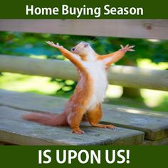 Real estate humor - cause we've seen our agents do this #SpringTime #RealEstate #RoseandWomble