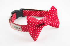 Red Polka Dot Bow Tie Dog Collar - so cute for little Buster on game day! I don't think he'd wear it though...