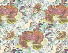 """Check out new work on my @Behance portfolio: """"roses"""" http://on.be.net/1JOpi7u"""