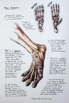 Lycan foot