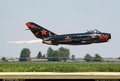 """Soviet - Mikoyan-Gurevich """"MiG-17"""" (Fresco) (Red 309) (2)"""