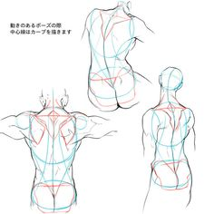 Exceptional Drawing The Human Figure Ideas. Staggering Drawing The Human Figure Ideas. Human Figure Drawing, Figure Drawing Reference, Art Reference Poses, Anatomy Reference, Body Anatomy, Anatomy Art, Anatomy Drawing, Anatomy Sketches, Drawing Sketches