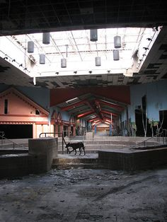 Inside an abandoned mall in Allen, Texas. (I've been inside this location myself!!)