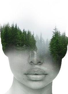 En el bosque Antonio Mora