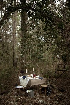 beautiful winter picnic for outside with a hanging table. Hanging Table, Photo Images, Summer Picnic, Exterior, Samhain, Outdoor Dining, Location, The Great Outdoors, Beautiful Places