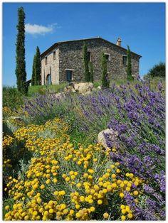 Art Symphony: Country Villa in Tuscany