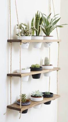 TriBeCa Trio Pot Shelf / Hanging Shelves / Planter Shelves / Floating Shelves / Three Tiered Shelf If you are looking for the showstopper of plant displays, look no further! Our hanging shelves joined forces with our planter stands and magic happene. Diy Hanging Shelves, Plant Shelves, Diy Hanging Planter, Small Shelves, Outdoor Shelves, Shelf Display, Rope Shelves, Window Shelf For Plants, Locker Shelves