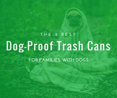 49 Best Dog Proof Trash Cans Animal Proof Garbage Cans