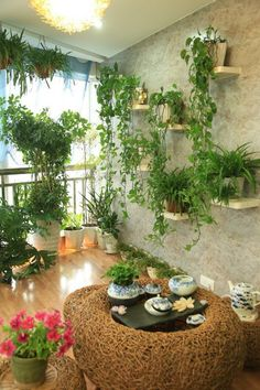 60 ways to turn your tiny balcony into an irresistible outdoor space 2019 page 8 Apartment Balcony Garden, Small Balcony Garden, Apartment Balcony Decorating, Balcony Plants, Outdoor Balcony, House Plants Decor, Terrace Garden, Plant Decor, Indoor Plants