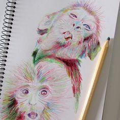 Sketchbook - Lápis multicor