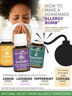 Allergy Bomb - Essential Oils
