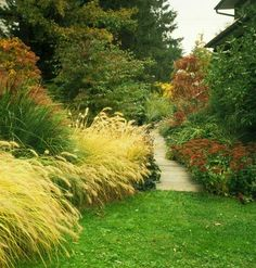 Ornamental Grasses    The right ornamental grass is an easy grower that adds sound and light to your lawn and garden. The problem with many ornamental grasses is they often grow too well. Self-sowing miscanthus can quickly overtake a garden. Click for more info. from myhomeideas.com :)