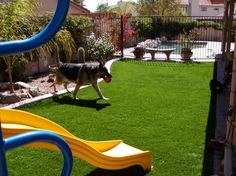 Give your pets the best dog run with synthetic pet turf from SYNLawn San Diego. Pet-friendly artificial grass designed to neutralize odors and absorb wast