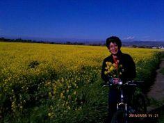 Mustard field - less artsy view