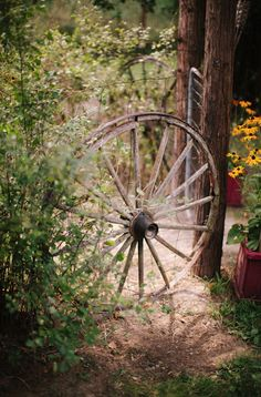 **1** An old wagon wheel For an unexpected detail in the woods