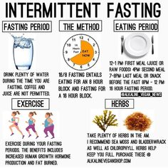 131 Best AUTOPHAGY & FASTING images in 2019   Intermittent