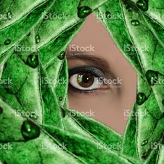the eye of woman royalty-free stock photo