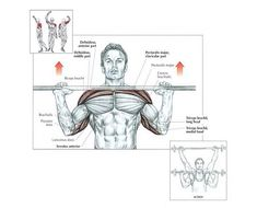 best exercise for shoulder- Military Press