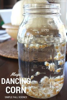 Is it magic or is it science? Make sure to add this quick and simple dancing corn Thanksgiving science activity to your list this Fall season. Preschool Science, Science For Kids, Preschool Crafts, Science Classroom, Science Fun, Science News, Physical Science, Teaching Science, Kids Crafts