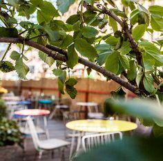 Den Start in den Tag im Schanigarten verbringen! Stuff To Do, Things To Do, Vienna, Plants, Espresso, Travel Inspiration, City, Travel Destinations, Nice Asses