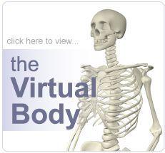 Home of the Virtual Body - MEDtropolis