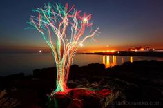 Light Painting - Light Art - The Tidal Tree - no edits/no layers - Michael Bosanko - 24/07/2013