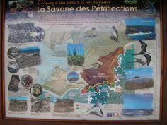 Quelques curiosités de la Savane-des-pétrifications (carte réalisée par l'Office National des Forêts)